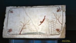 Paestum - Museo
