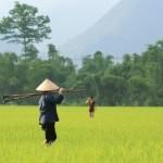 VIETNAM: autentico NORD e classico SUD